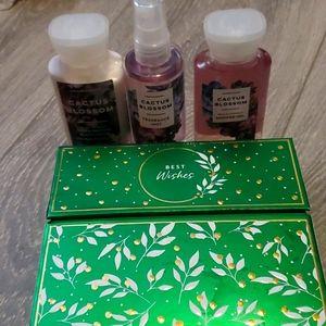 Cactus Blossom Gift Set
